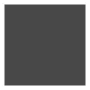 Prismatic Services Inc. penny-dark
